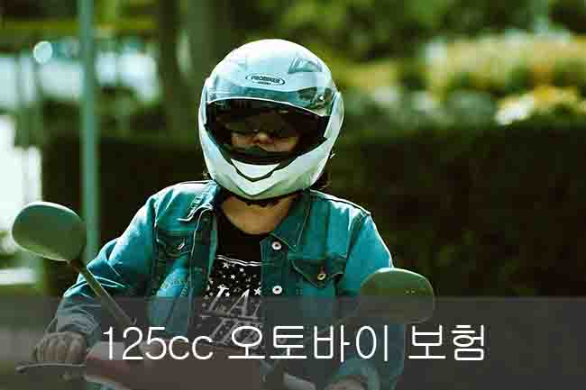 125cc 오토바이 보험