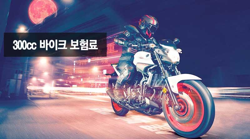 300cc 400cc 바이크 보험료